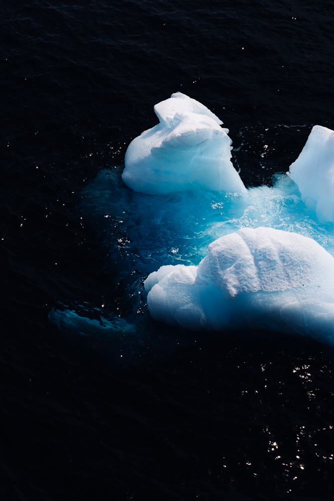allisonqmccarthy-20141211-antarctica-3305.jpg