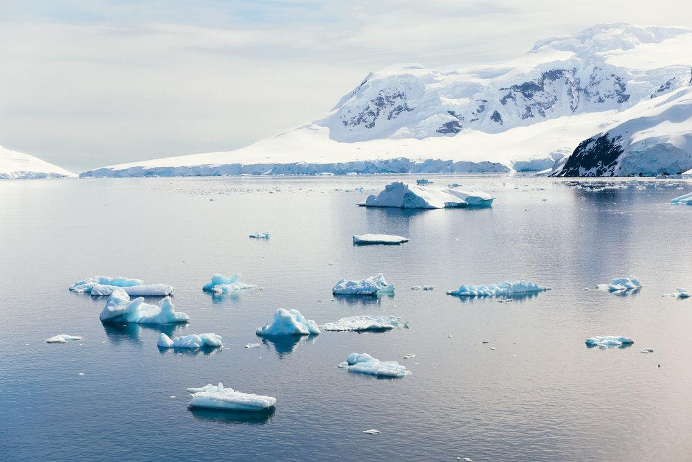 allisonqmccarthy-20141213-antarctica-7347.jpg