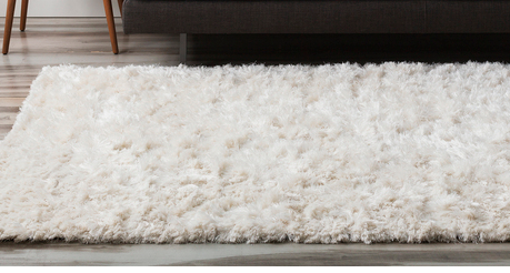 SUPER SOFT AREA RUG  $600  5X8