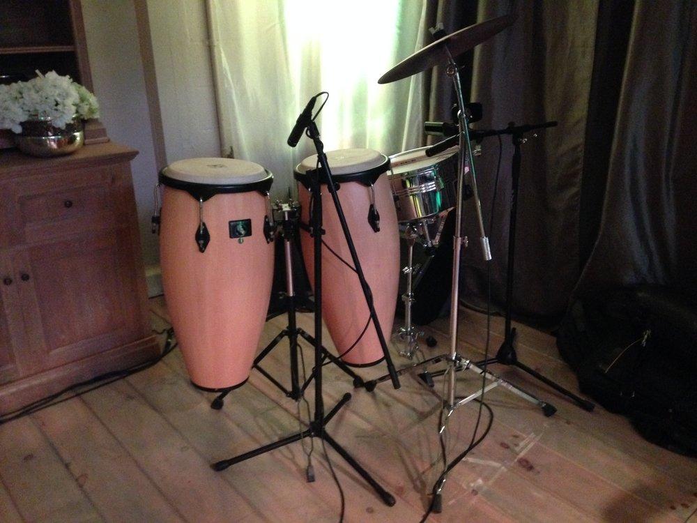 Santa Barbara Wedding DJs : Drummer & DJ Percussionist