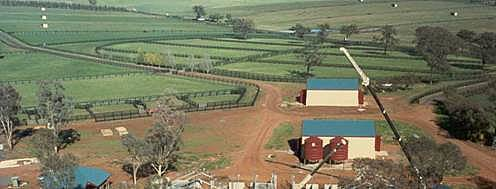 Brooklyn Lodge under construction. It is now one of the premier agistment farms in Australia