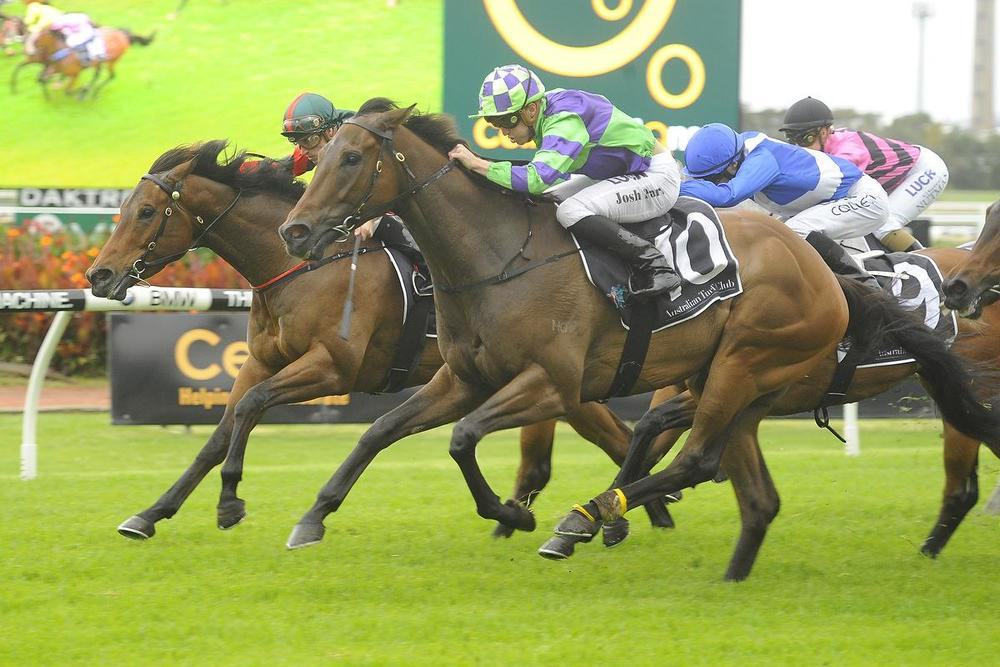 Figtree back to winning form at Rosehill on Saturday. Picture: Bradley Photography