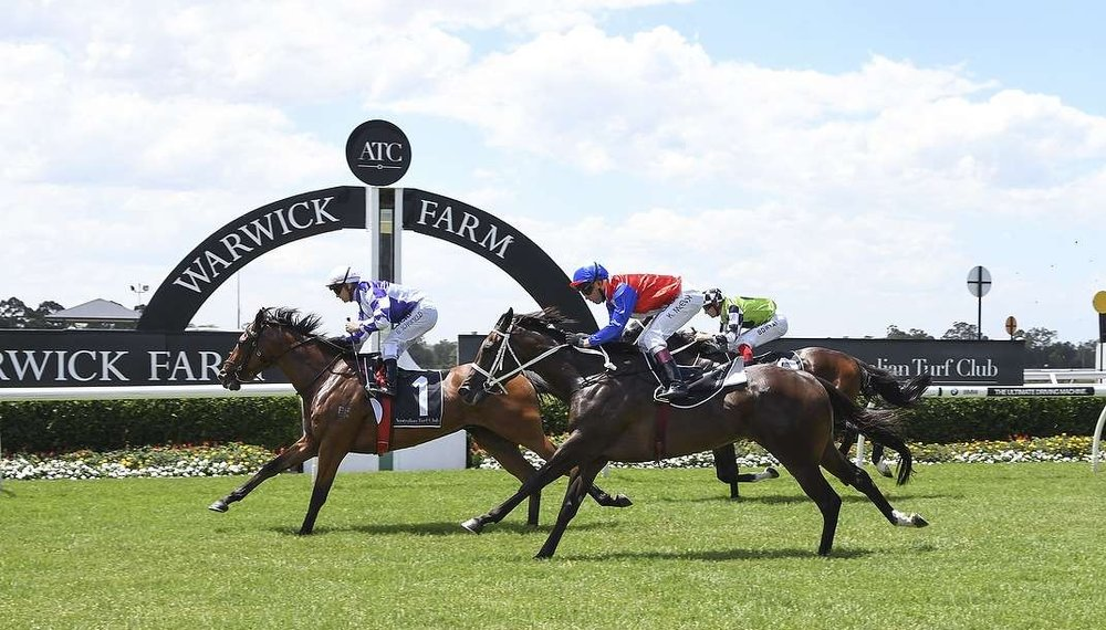 Gauguin winning at Warwick Farm