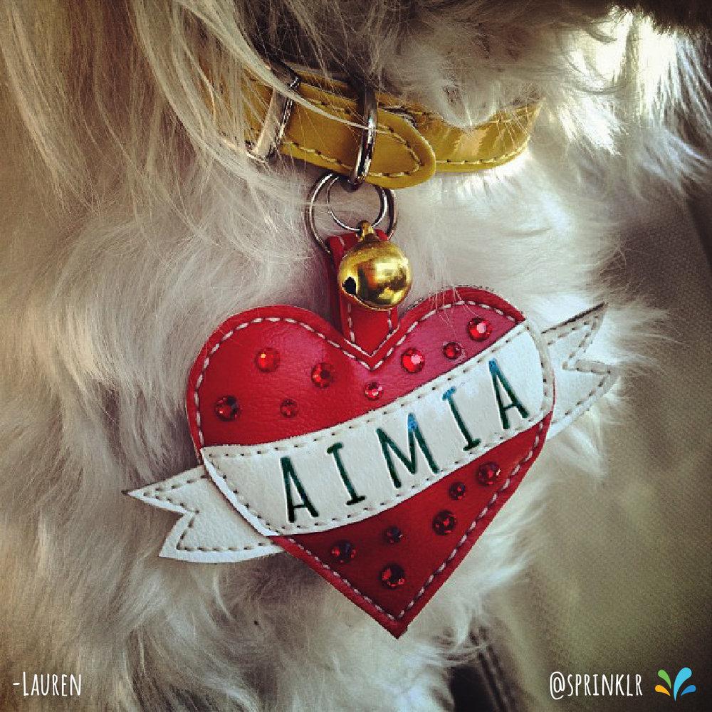 20180830_Aimia.jpg