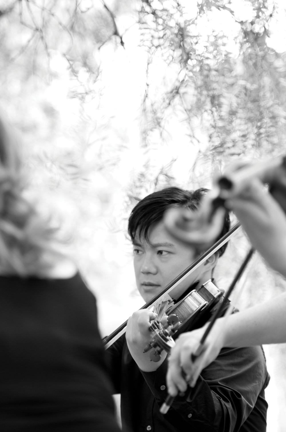 Shane Chen, violin