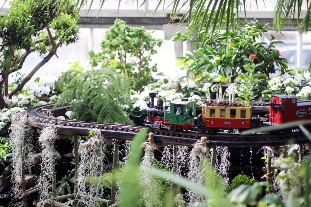 Allan Gardens Toronto train