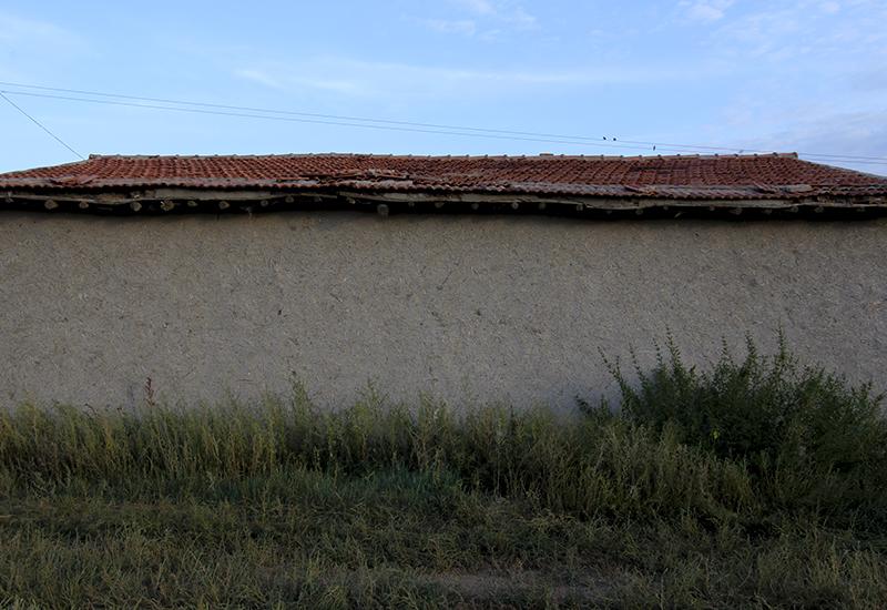 grass house.jpg