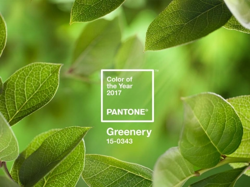 PANTONE-Color-of-the-Year-2017-Greenery.jpg