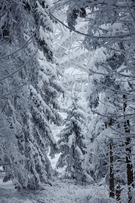 10_Franek_Taros_Nova_Sky_Walk_Winter.jpg
