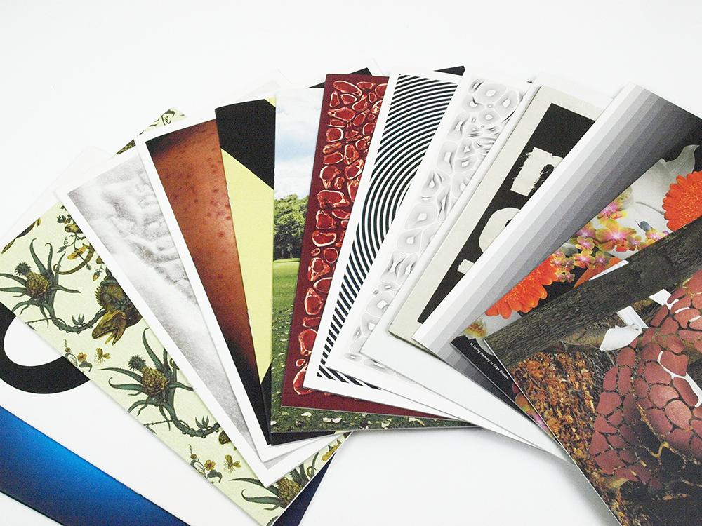 Sagmeister Book Review - Liz Mosley