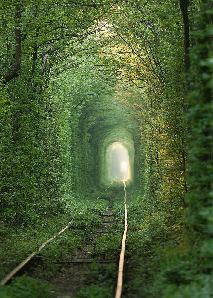 Tunnel-Love-Ukraine.jpg