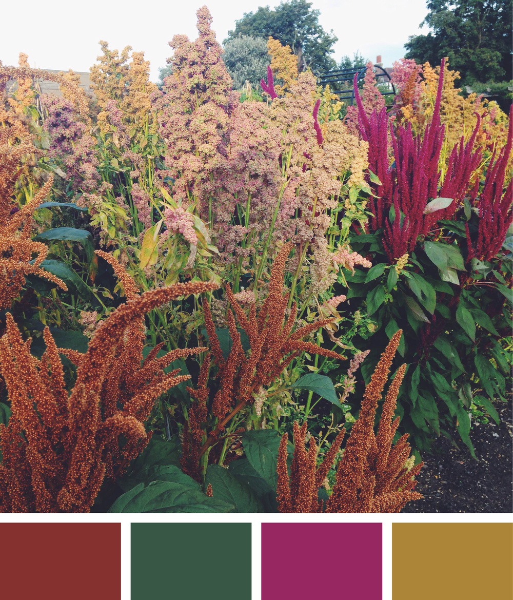 colours5.jpg