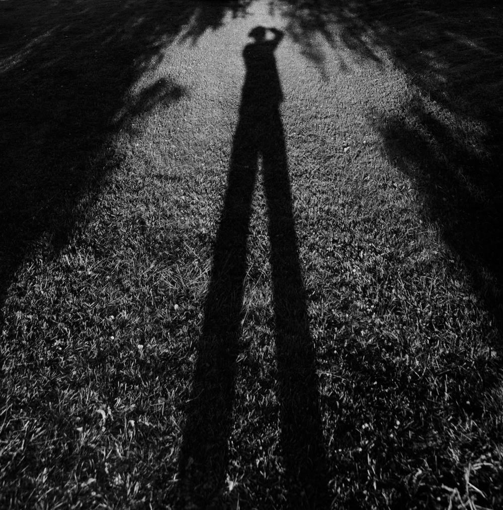 SelfShadow