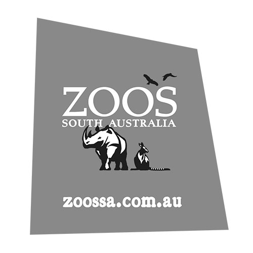 Zoos South Australia Red Fox Films Client