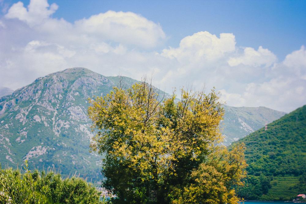 Montenegro2014-36.jpg