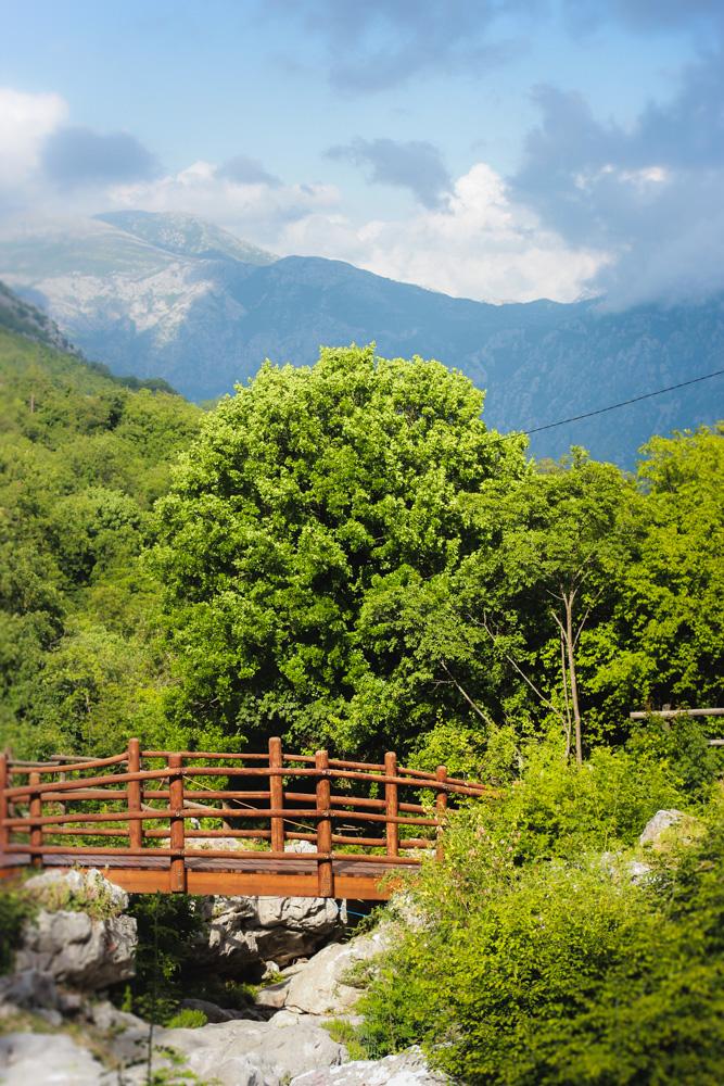 Montenegro2014-57.jpg