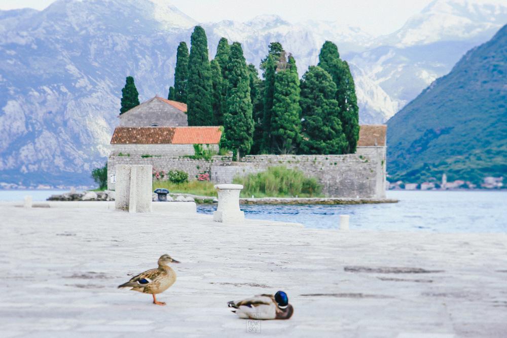 Montenegro2014-457.jpg