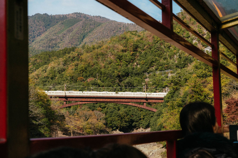 A ride on the Sagano Romantic Train to view the autumn foliage