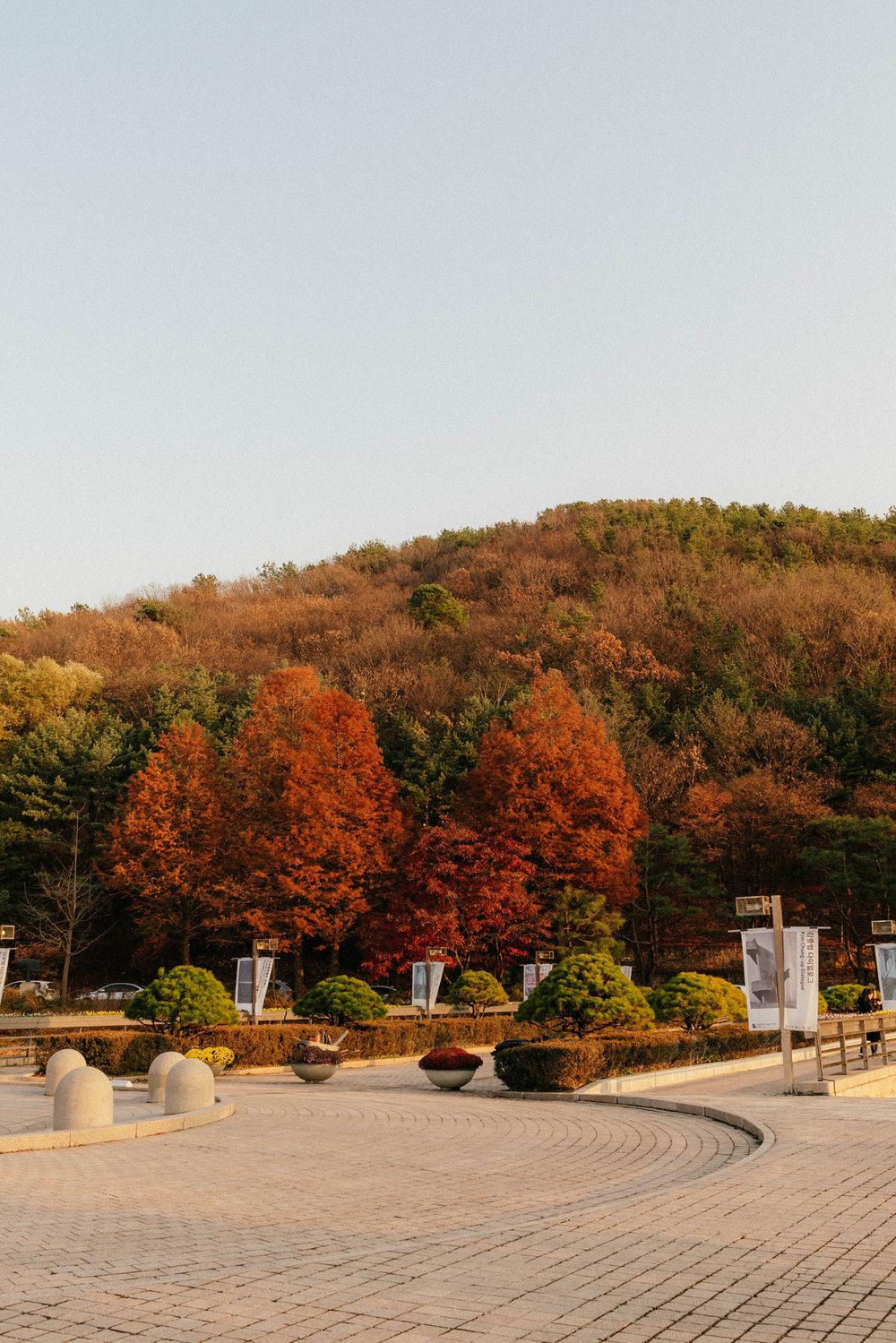 National Museum of Modern and Contemporary Art, Gwacheon