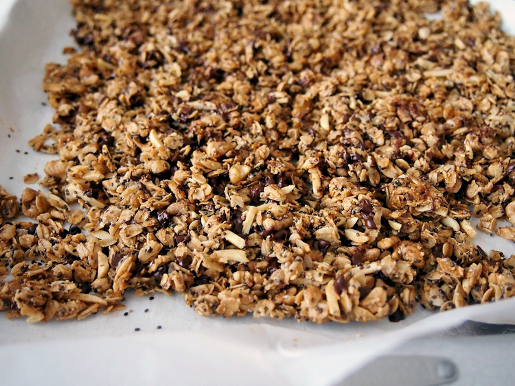 oatmeal-cookie-chia-granola