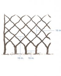 Belgian Fence