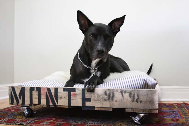 cama para perro de pallets