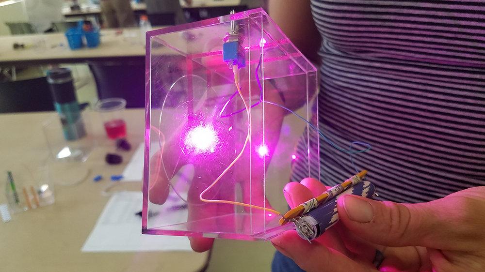 LED Terrariums_DBG (9).jpg