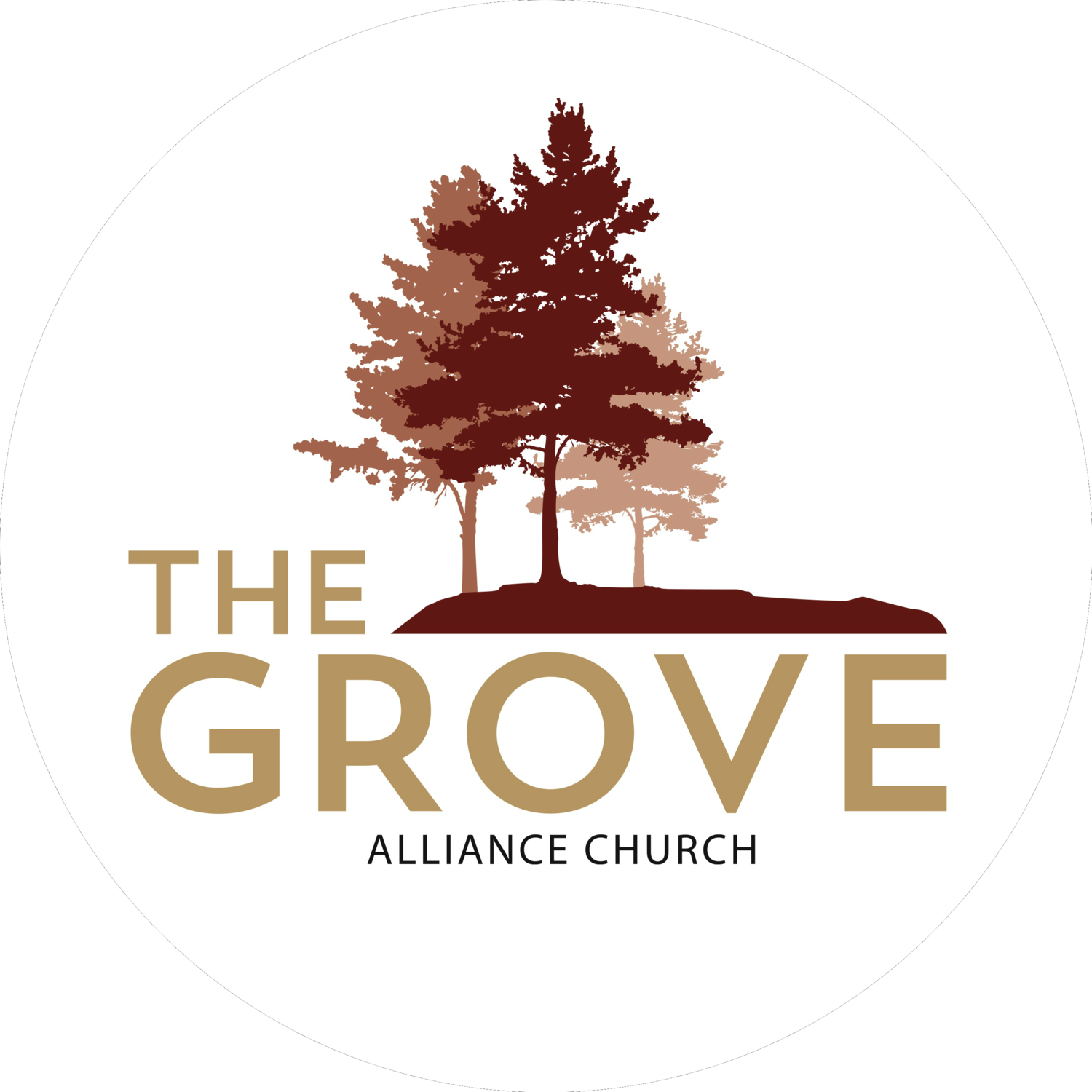 The Grove Alliance Church