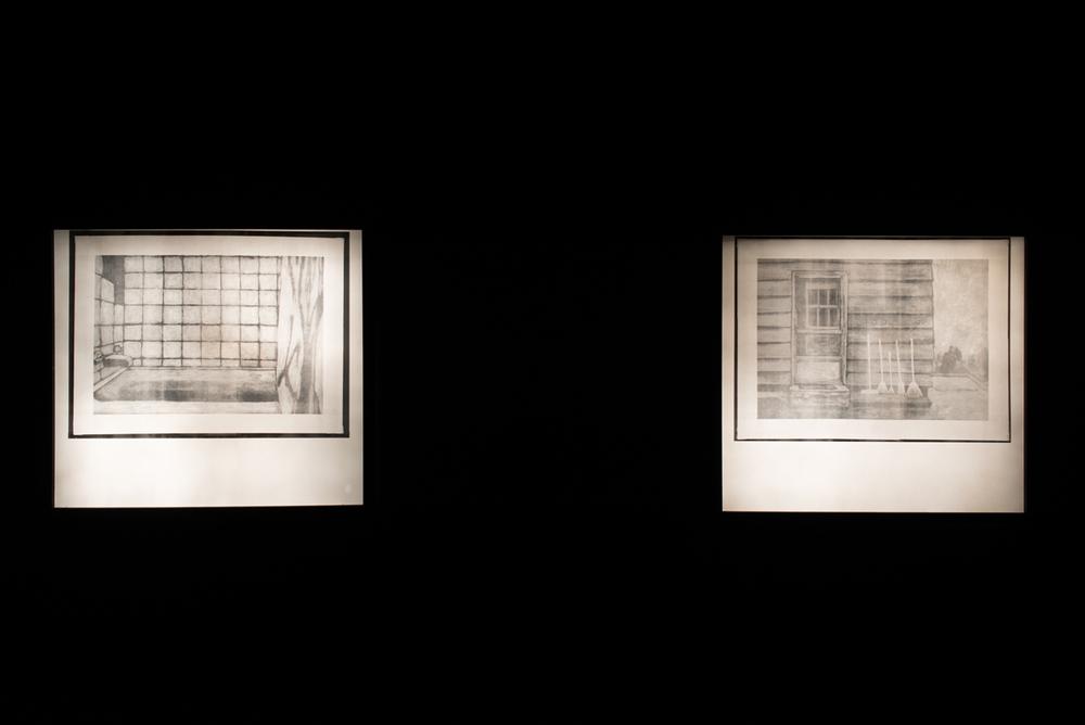 Bath  Digital Radiogram in artist lightbox  24 x 32 in.    Knock, Knock  Digital Radiogram in artist lightbox  24 x 32 in.