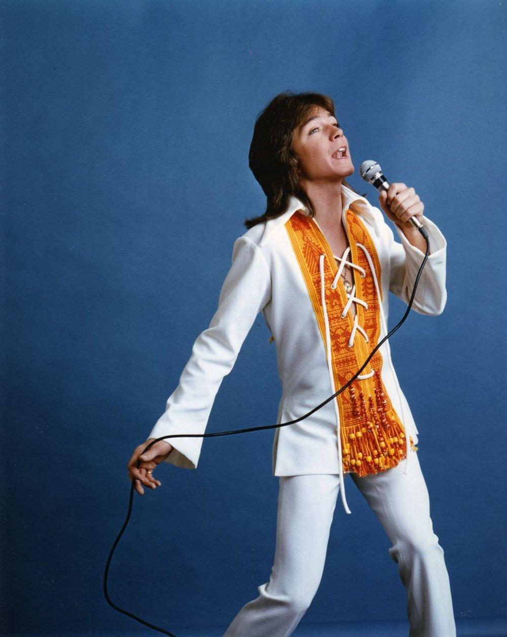David 1971 concert pose.jpg