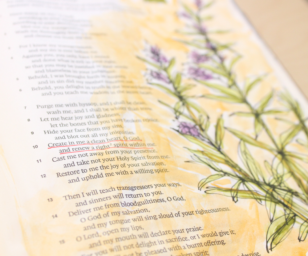 Cleanse Me with Hyssop - Create in Me a Clean Heart - Psalm 51:10 - Illustrated Faith - by Daughter Zion Designs