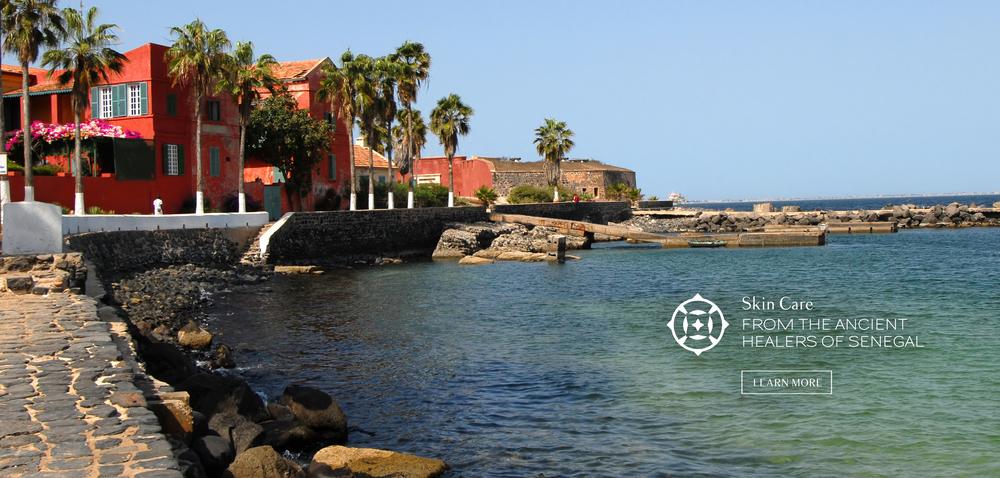 HomepageBanner_Senegal2.jpg