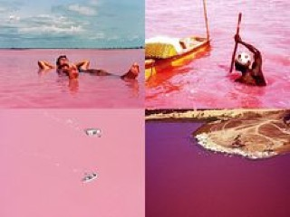 If we could only pick a spot for this year's Valentine's Day, it would be the Lac Rose. It's a gorgeous salted pink lake located at the outskirt of Dakar, Senegal ❤️ #lacrose #pinklake #love #magic #salt #lake #valentines  #valentinesday #Dakar #Senegal