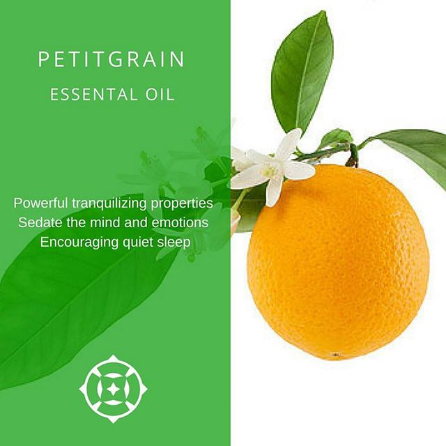 Ingredient Spotlight: Petitgrain! Find it in all our Marchand de Rêves products, our Beauty Sleep line devoted to sleep for a glowing and healthy skin!  #Sleep #sleeprevolution #dreams #petitgrain #sleepRituals #Beauty #GreenBeauty #Glowing #Rested #Tiossan #NaturalRemedies #GreenBeauty