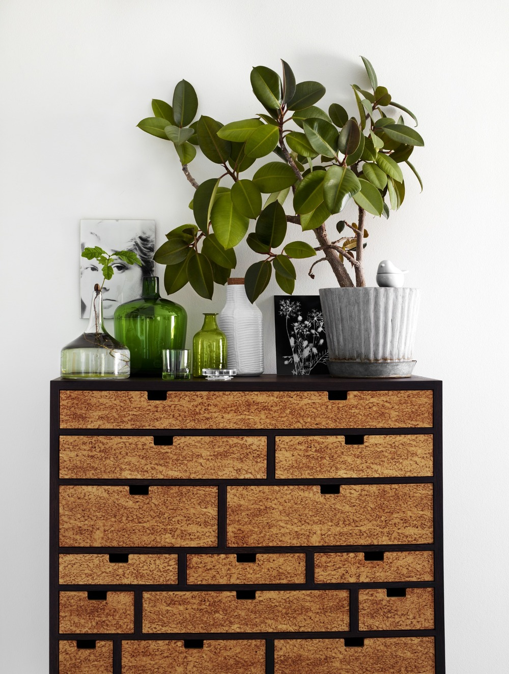 A lovely Rubber Plant spruces up this warm, organic dresser. Image Source: Tina Hellberg  via Cargo Collective