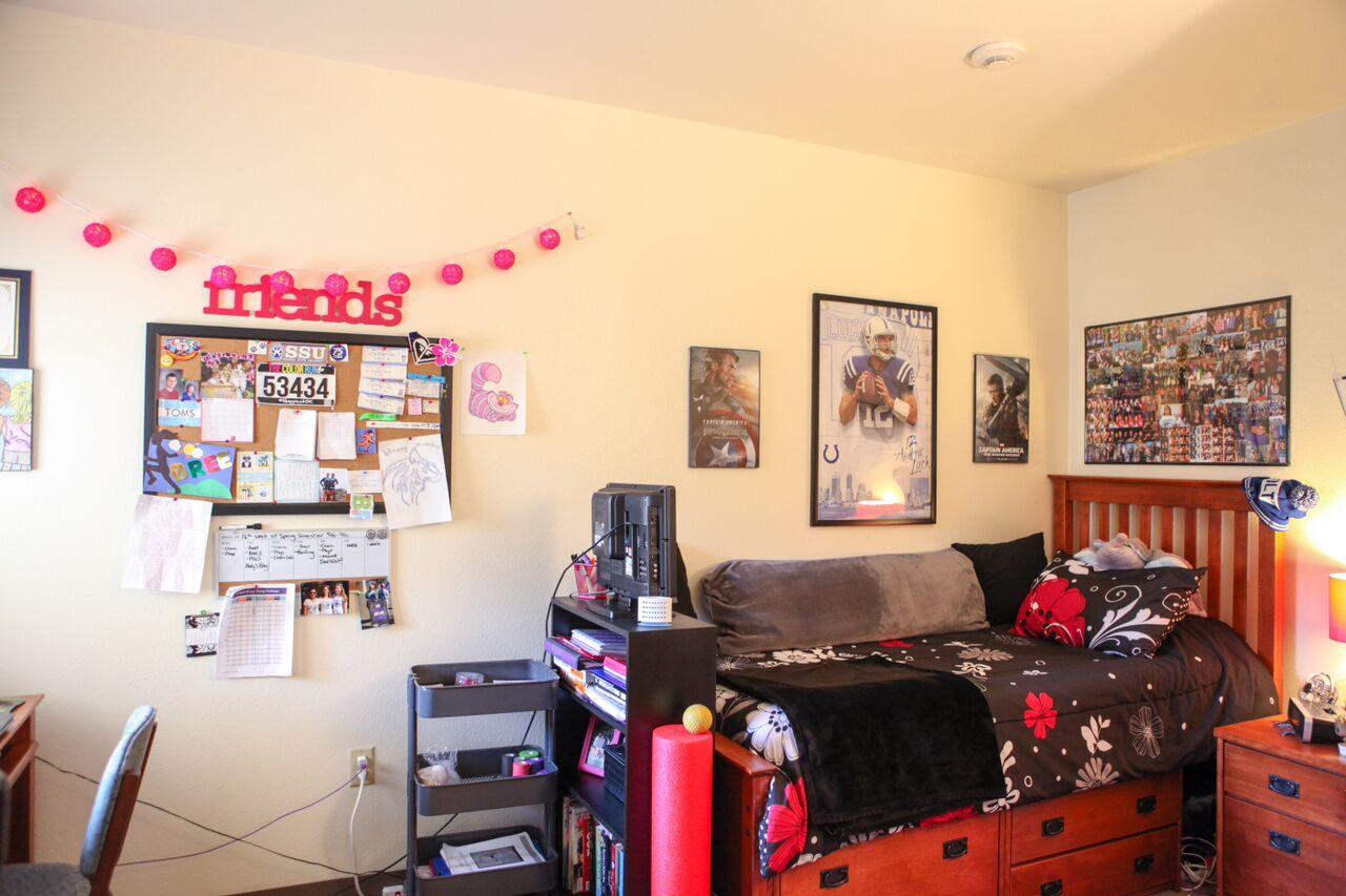 Dorm Room Decoration Trends — Seawolf Living