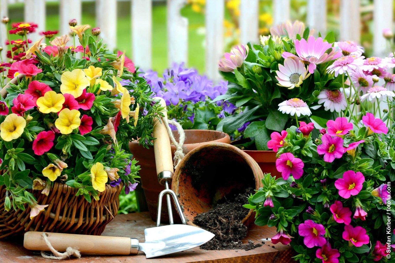 Výsledok vyhľadávania obrázkov pre dopyt garden work