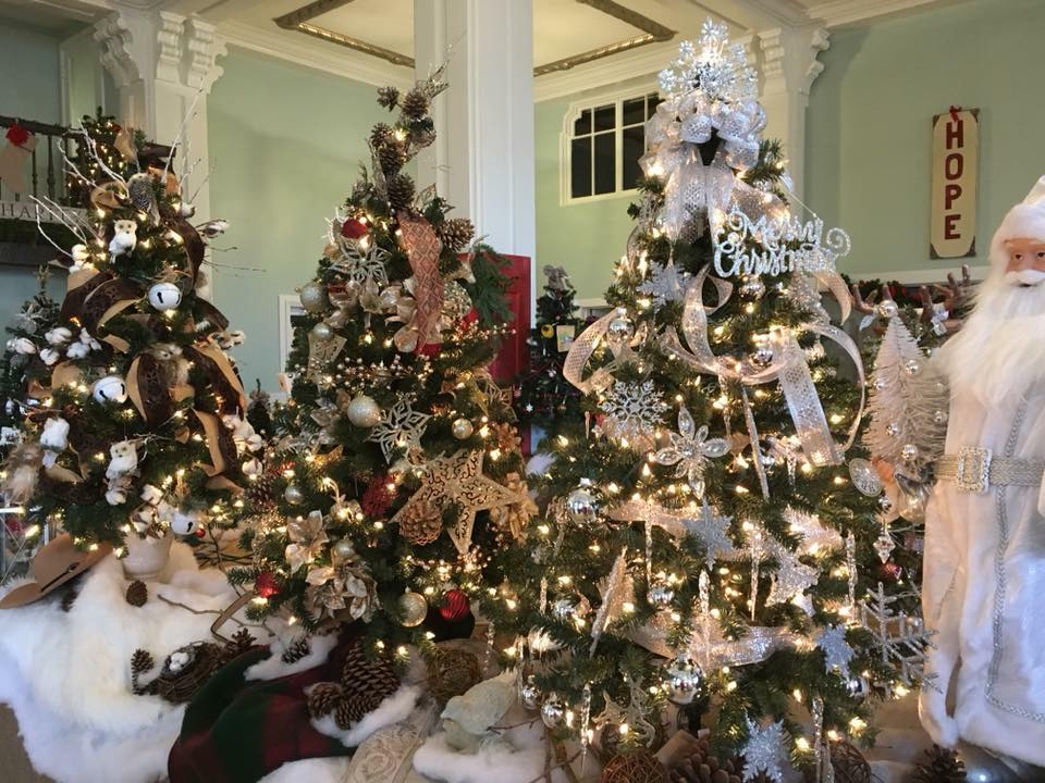 The spirit of holiday season is all about giving. This Petaluma tradition is dedicated to raising money for charity with a tree auction and raffle.