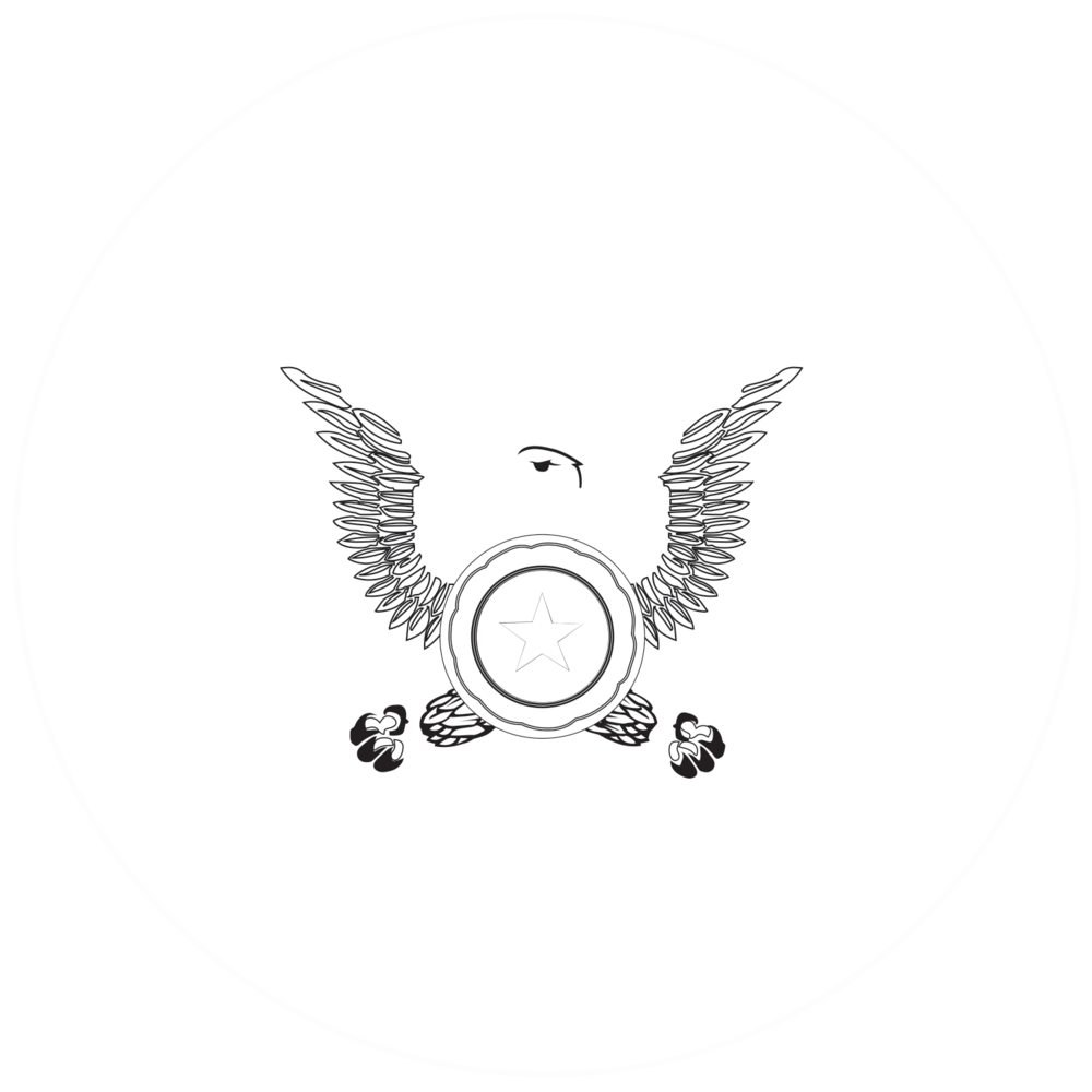 The Brooklyn Star