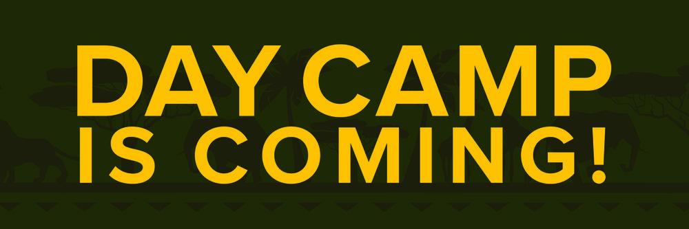DayCamp2019WebsiteBanner.jpg