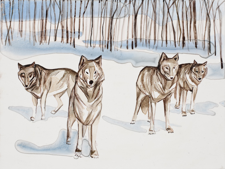 "Wolves 1   watercolor   9"" x 12"""