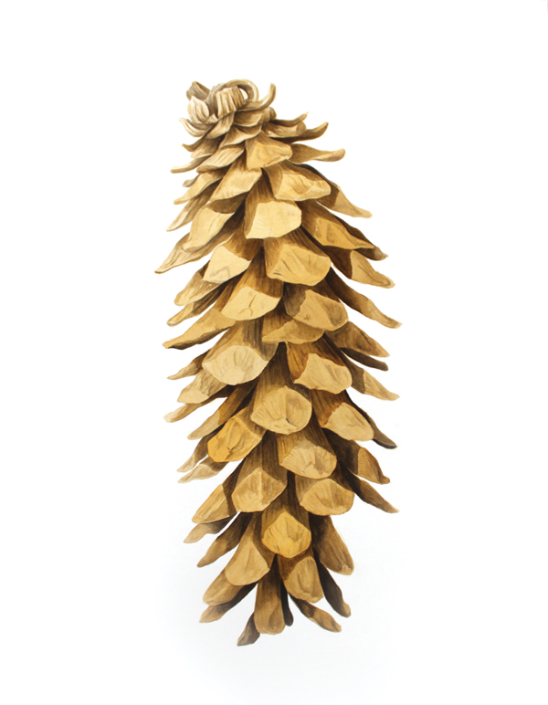 Sugar Pine Cone - Pinus lambertianaPinus lambertiana is the tallest and most massive pine tree, and has the longest cones of any ... The sugar pine is the tallest and largest Pinus species, commonly growing to 40–60 meters tall.original, 5x16