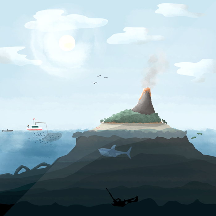 MS_Island.jpg