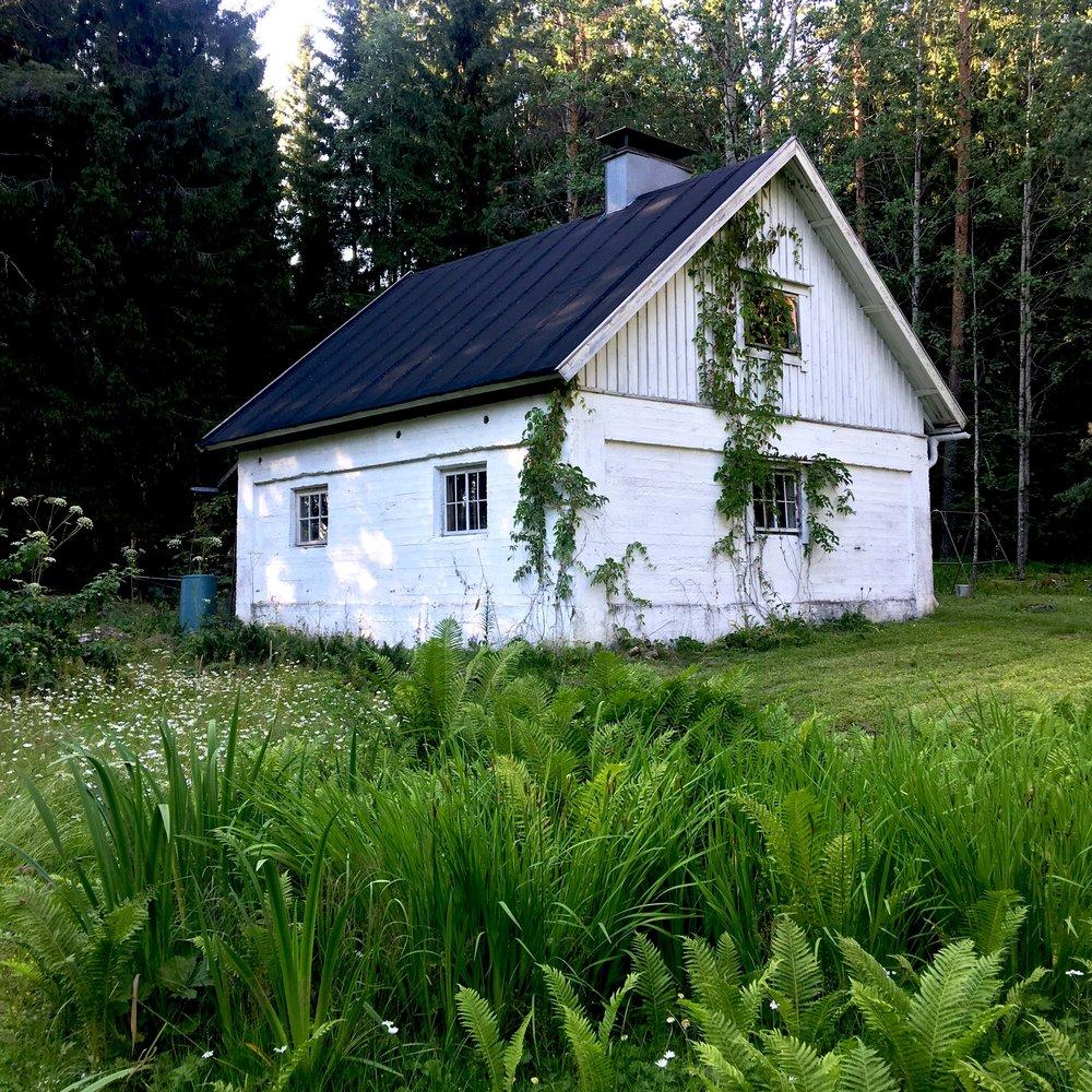 sauna small.jpg