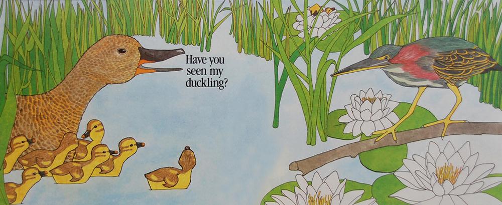 Duckling 11.jpg