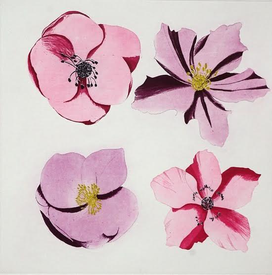Grainne Cuffe, Hellebores,Pink