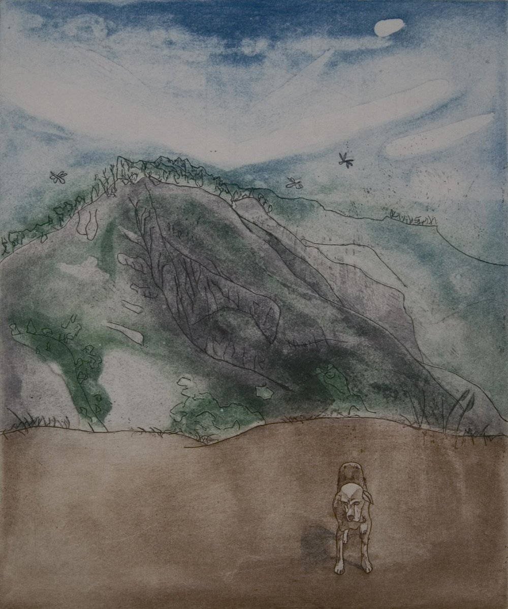 Ciara O'Hara - Little Peak etching and aquatint unframed €140