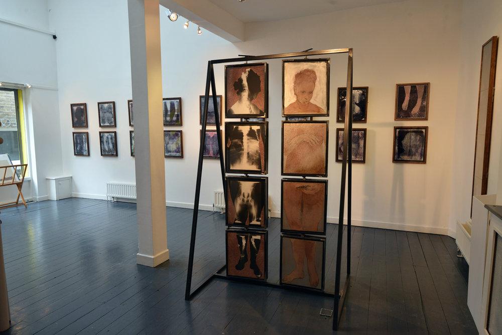 Niamh McGuinne, Wilgerfortis, installation view