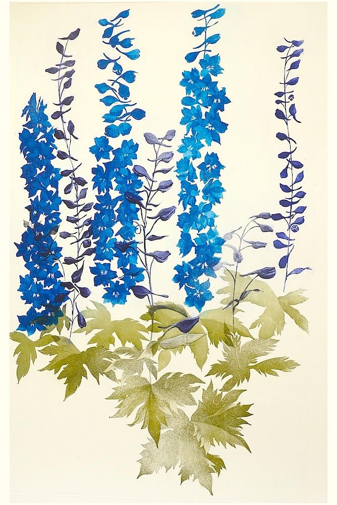 Grainne Cuffe, Delphinium I  Etching, image size: 112h x 70.5w cm, sheet size: 136h x 86w cm, €1100.00 unframed
