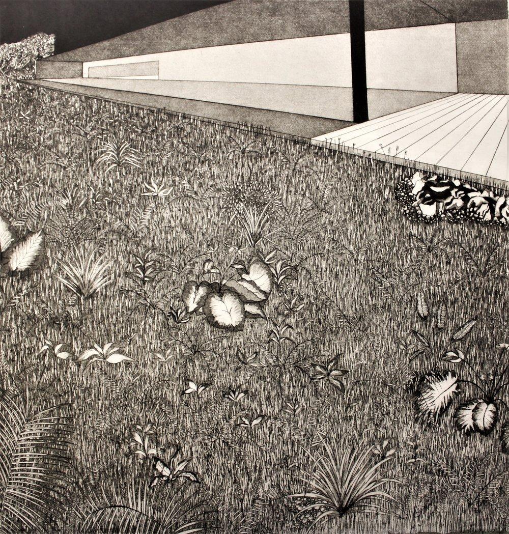 Rebecca Phelan, Simplicity, etching, €350 framed